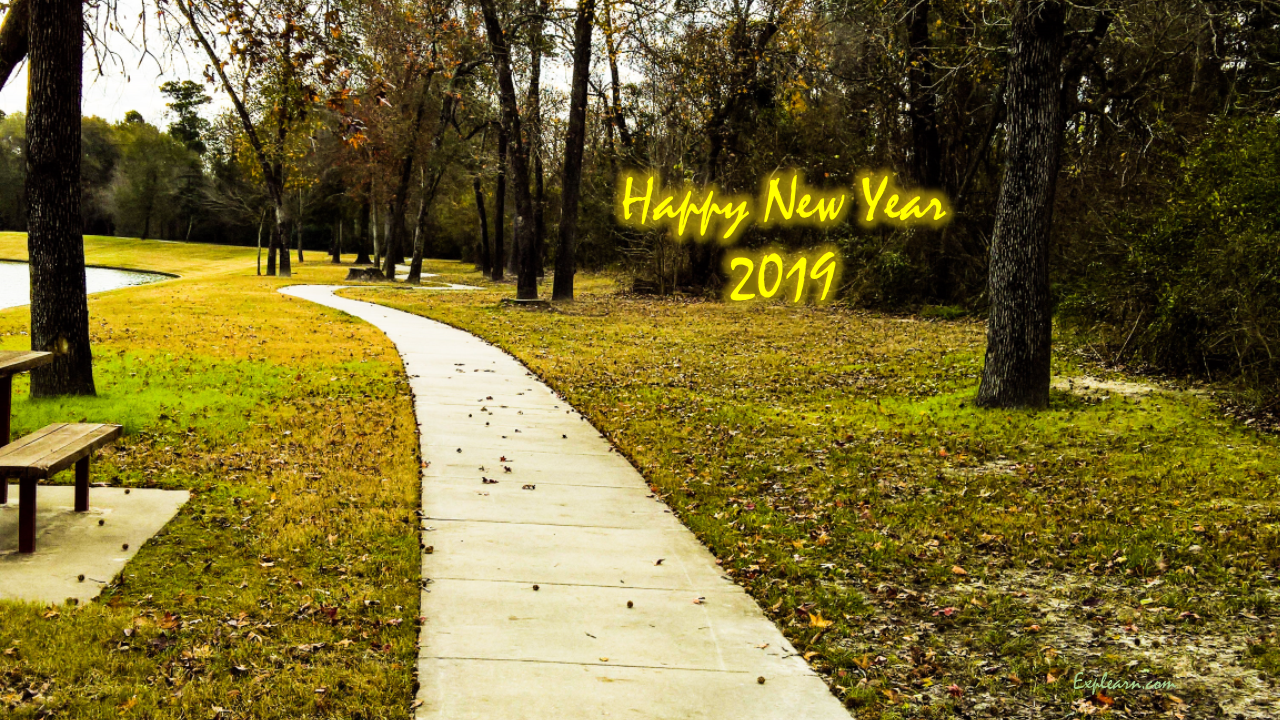Happy New Year 2019 from explearn.com